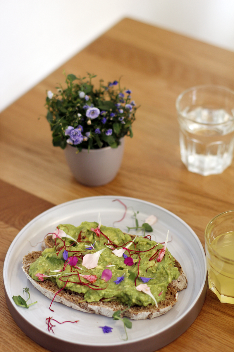 vienna city guide: bits and bites vienna - avocado brot | h.anna